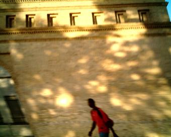Capturas 2007-08-01