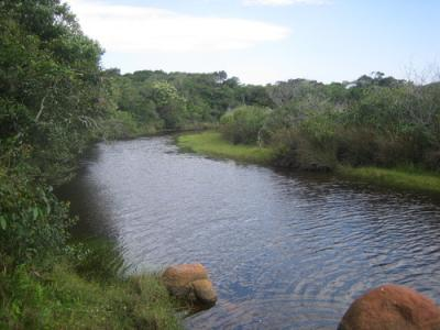 Río Naufragados desde la pista